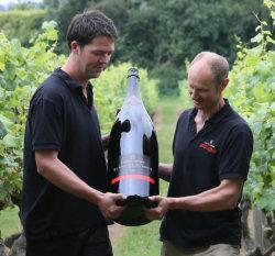bottle in vineyard