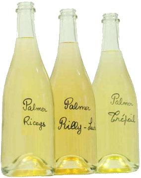 palmer bottles