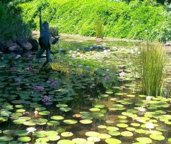 winery pond
