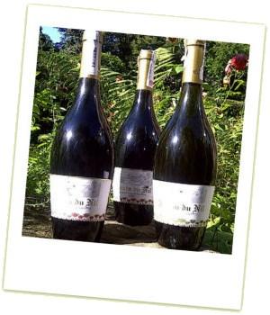 Jardin du Nil wine