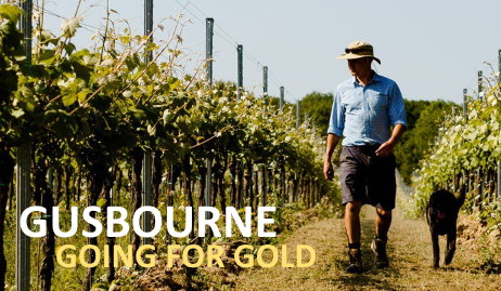 Gusbourne Estate, wines of Kent | wine-pages